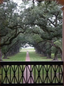 View from the balcony at Oak Alley Plantation