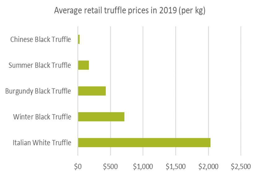 Average retail truffle prices in 2019