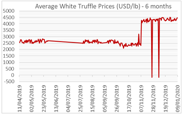 Average white truffle prices (USD/lb)