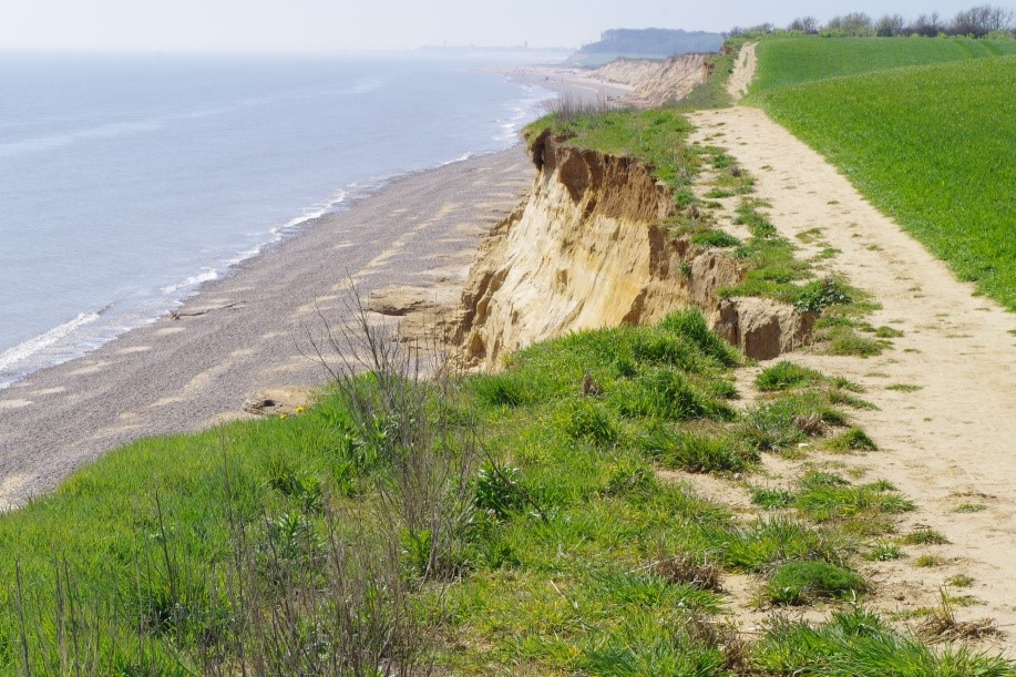 Figure 1: The retreating cliffs at Covehithe Suffolk (7 May 2018) showing evidence of rapid retreat and high process energetics