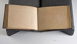 Dr T. R. Armitage's Journal, 1880-82, Braille.
